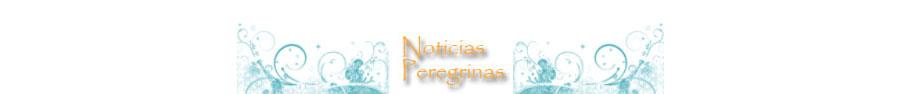 Noticias del Camino de Santiago