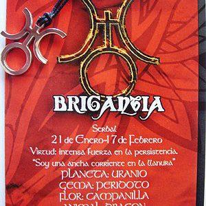 Colgante acero Deidad Celta Brigantia